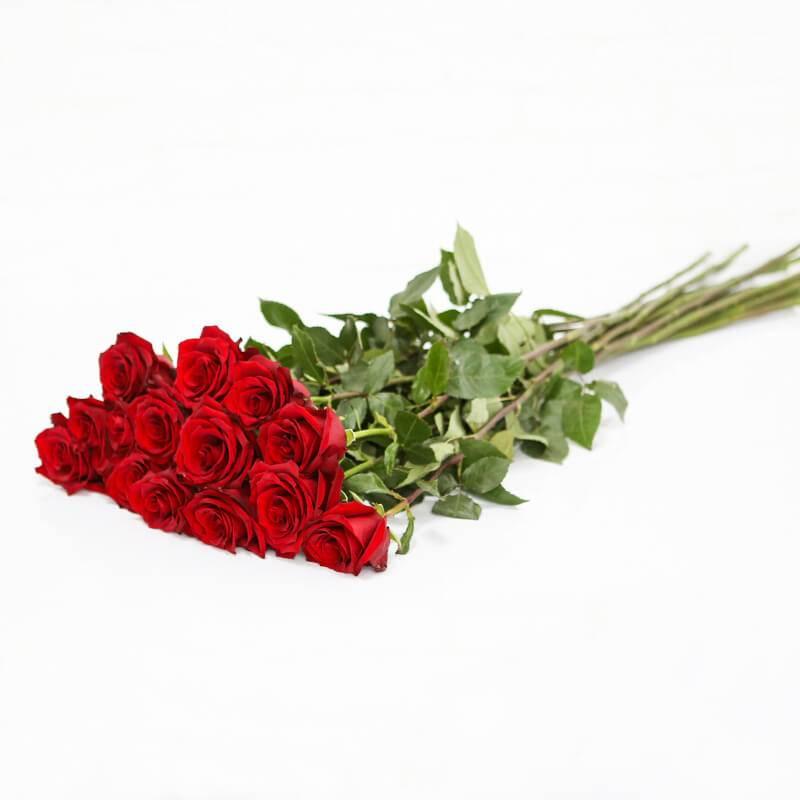 Букет из 15 голландских роз