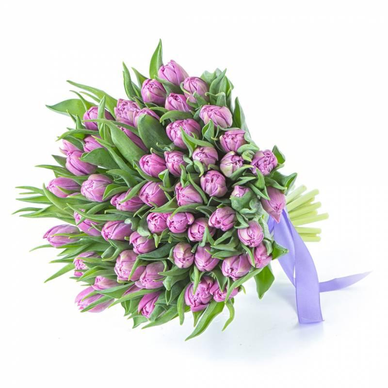 51 сиреневый пионовидный тюльпан