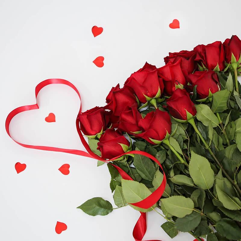 Розы красные импортные 60 см.