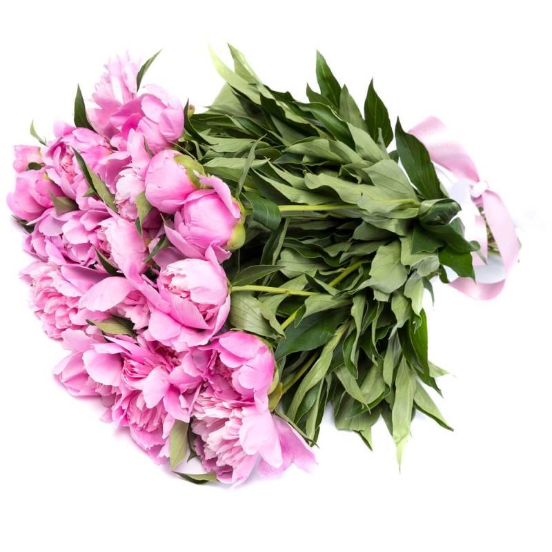 Букет из ярких розовых пионов