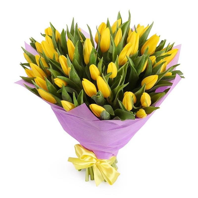 Букет из 51 желтого тюльпана.
