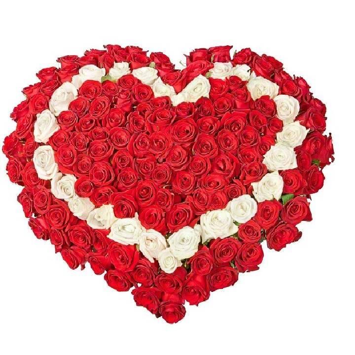 Сердце из белых и красных роз