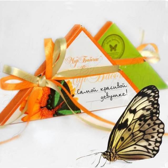 Конверт ручной работы для бабочек