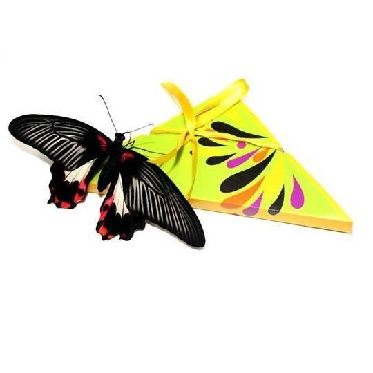 Конверт для бабочки с открыткой
