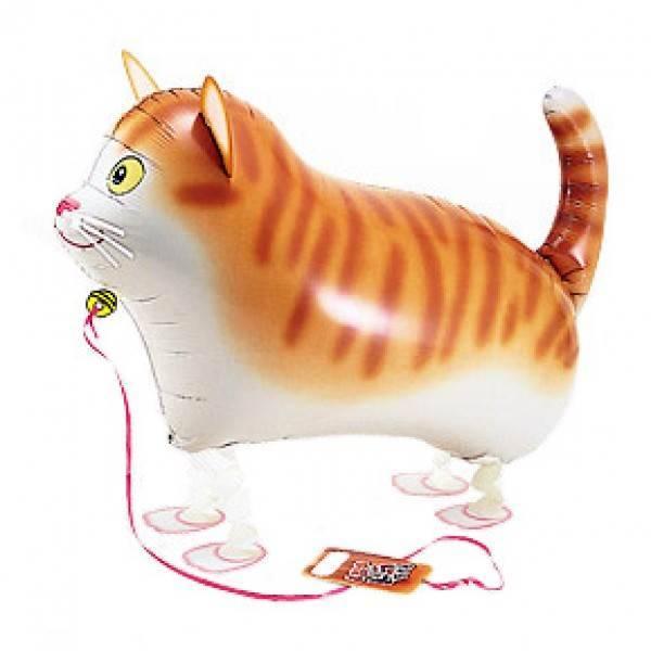 Ходящий шар «Кот»
