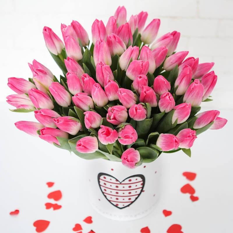 Нежно розовый тюльпан
