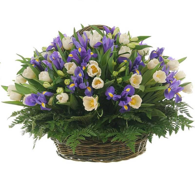 """Корзина с тюльпанами и ирисами  """"Лиловые сны"""""""