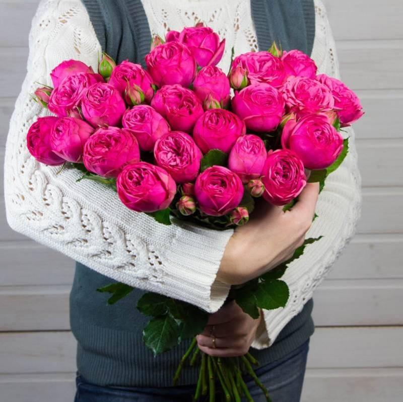 """Пионовидные розы """"Пинк Пиано"""""""