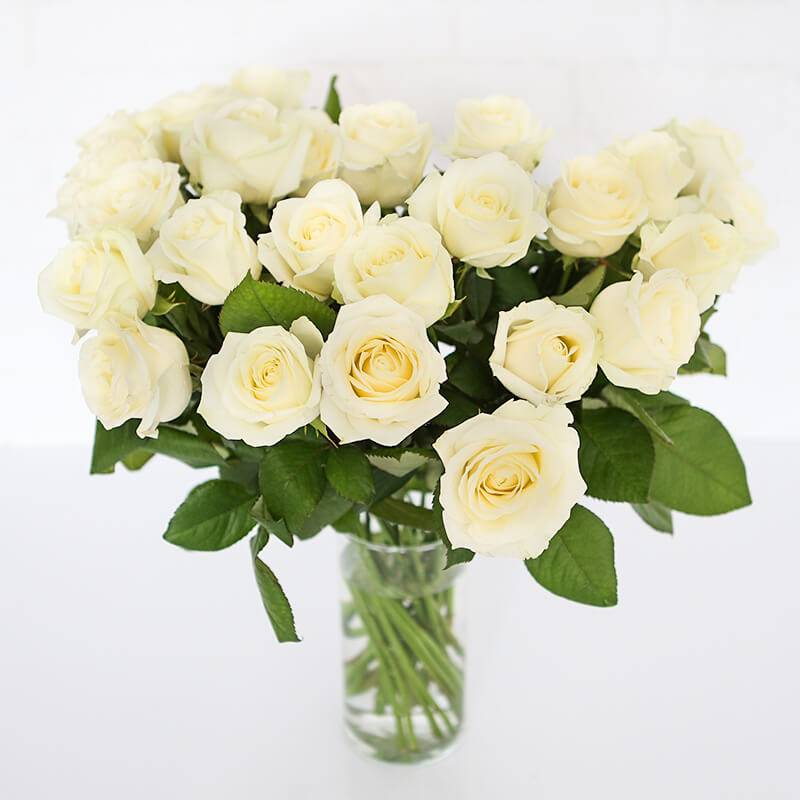 """Роза белая """"Аваланч"""" 50 см."""