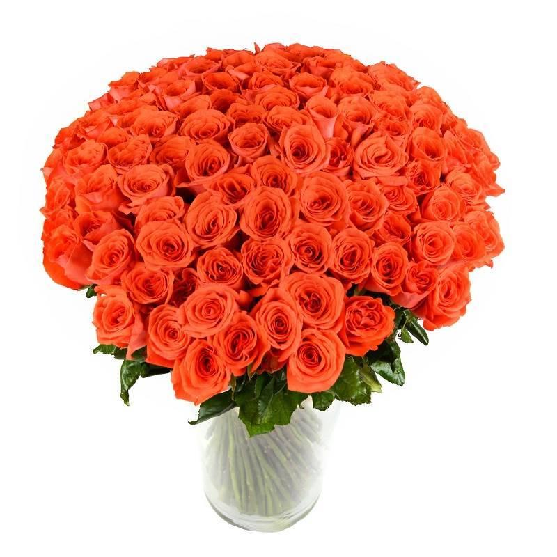 "101 роза ""Промеза"" оранжевая."