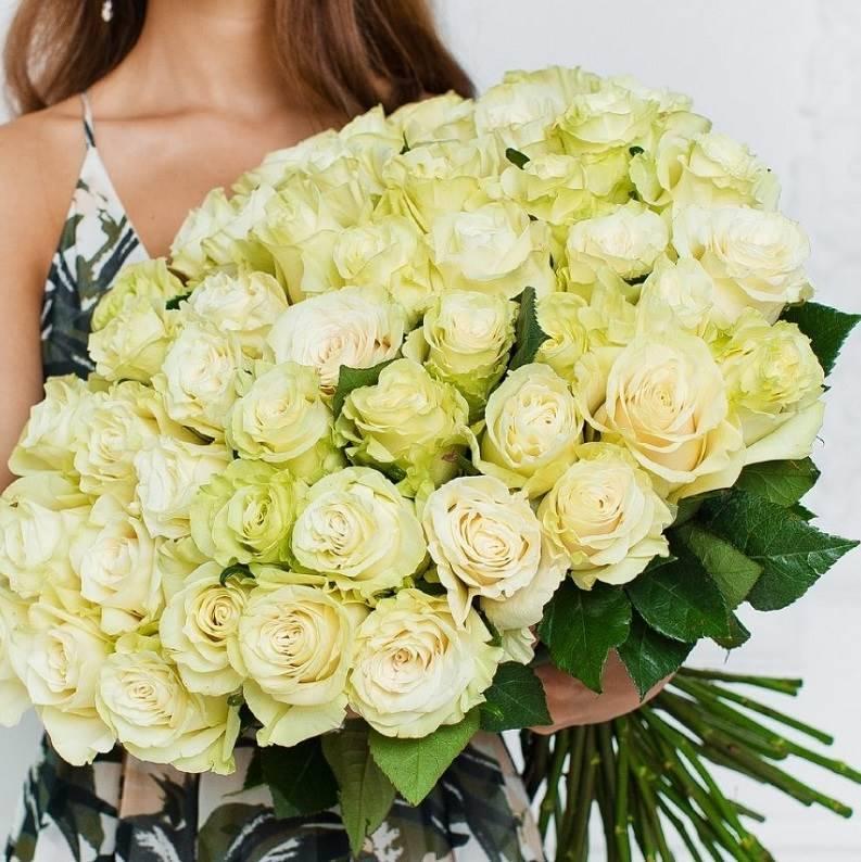 Розы белые Mondial (Эквадор)