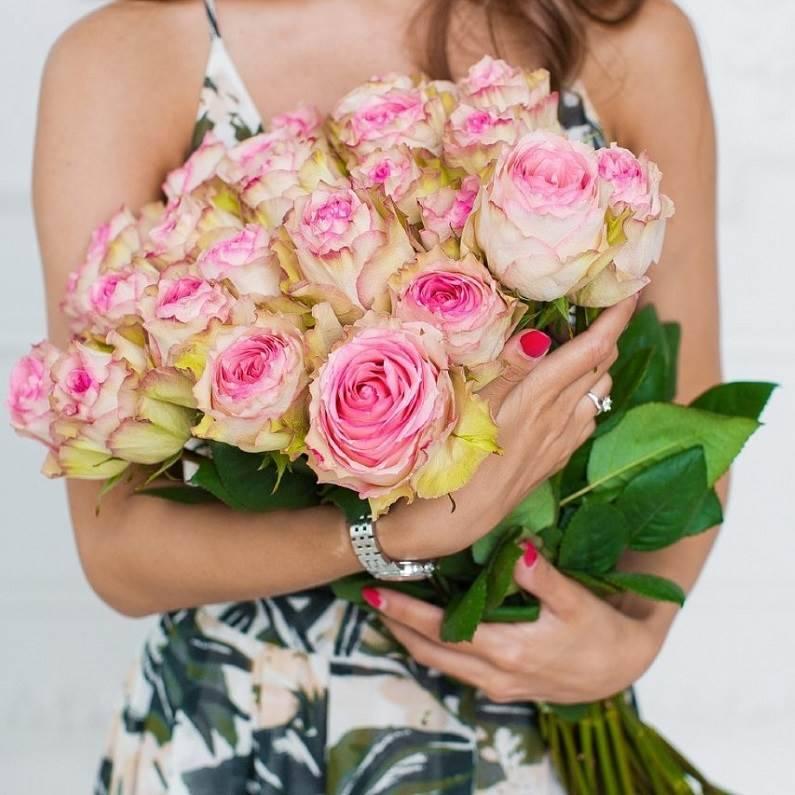 Розы двухцветные Esperance (Эквадор)
