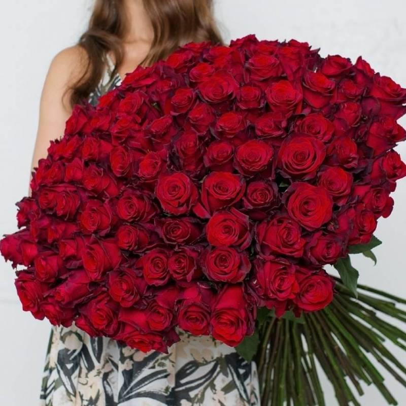 """Букет 101 красная роза """"Эксплорер"""" (Эквадор)"""