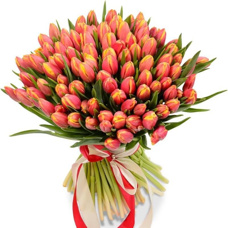 Желто-оранжевые тюльпаны